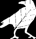 Crow-Icon-White